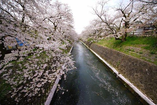 Gando River