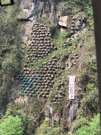 Dujiangyan, Kina: photo1.jpg