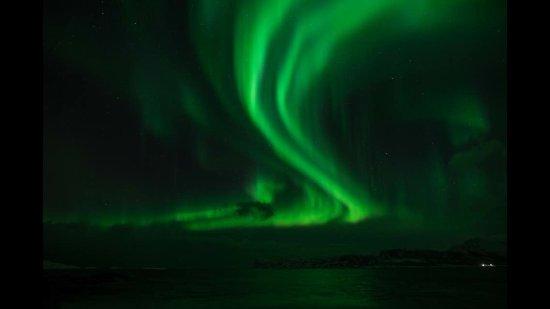 Chasing Lights: Northern lights!