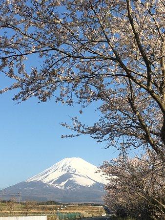 Susono, Japón: photo6.jpg