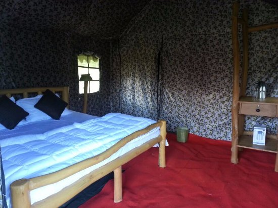 Pristine Peaks Eco C& Double Bed Tents : double bed tents - memphite.com