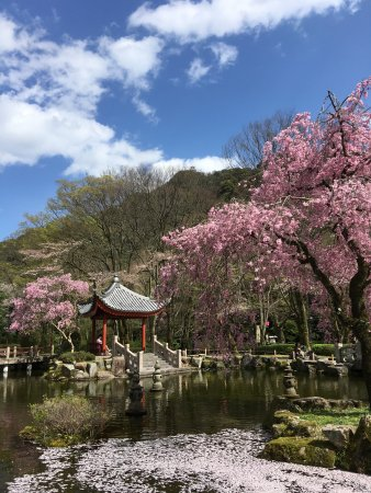 Gifu Park Photo