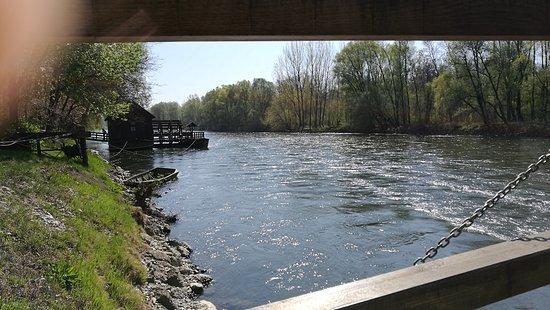 Verzej, Slovenia: IMG_20170401_113100_large.jpg