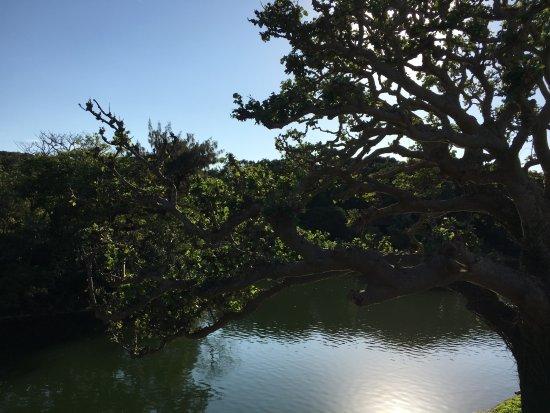 Ryutan Site: 호수의 전경