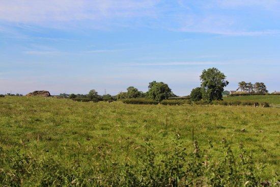 Gaerwen, UK: вид на Bryn Celli Ddu с дороги