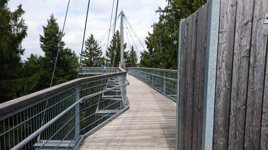 Skywalk Allgäu Naturerlebnispark