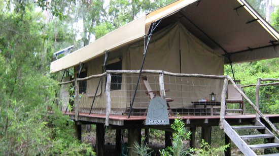 Paperbark Camp: My Room