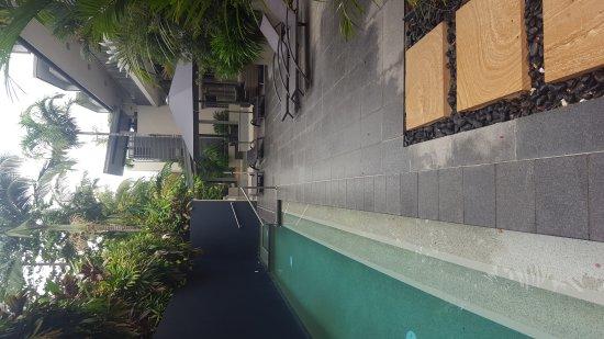 Coconut Grove Apartments: 20170414_073418_large.jpg