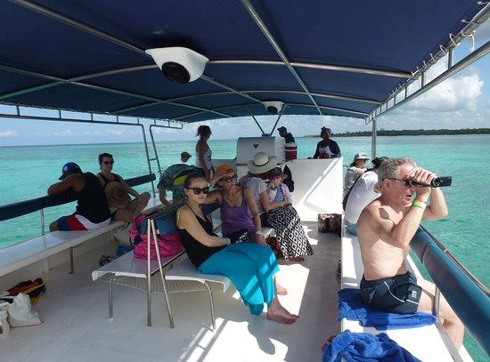 Bayahibe, Repubblica Dominicana: Le beau catamaran motorisé ... qui est tombé en panne ...