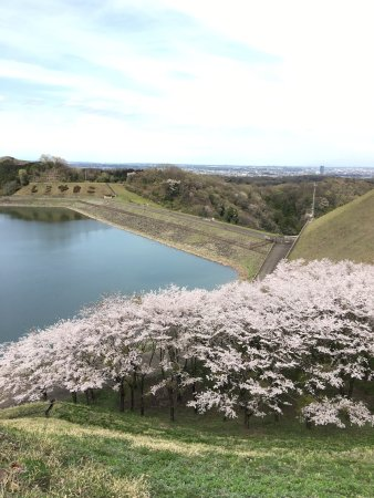 Shiroyama Lake