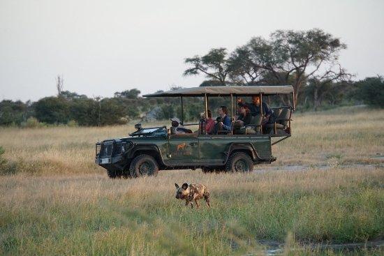 Chitabe Lediba Camp: photo4.jpg