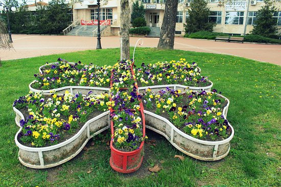 General Toshevo, Bulgaria: Butterfly pot