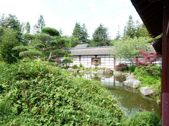 Ext rieur du jardin japonais nantes picture of jardin japonais nantes tripadvisor for Jardin japonais nantes