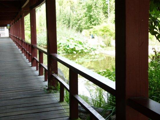 Jardin japonais nantes foto van jardin japonais nantes tripadvisor for Jardin japonais nantes