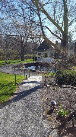 The Inn at Turkey Hill: Duck pond