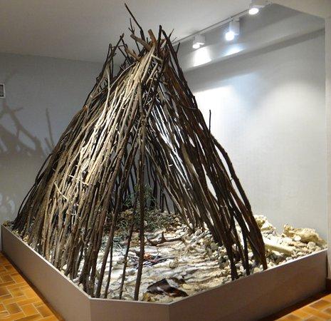 Le site de Terra Amata: fotografía de Terra Amata Museum, Niza - Tripadvisor