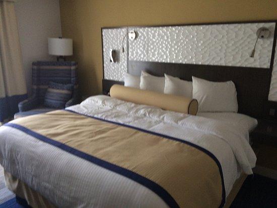 Lexington Hotel & Conference Center - Jacksonville Riverwalk: photo1.jpg