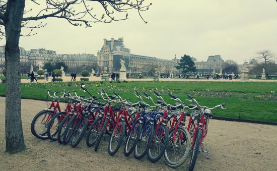 Jardin des tuileries picture of fat tire tours paris for 5 jardin ockeghem tours