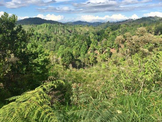 Jalapa, Nicaragua: photo2.jpg