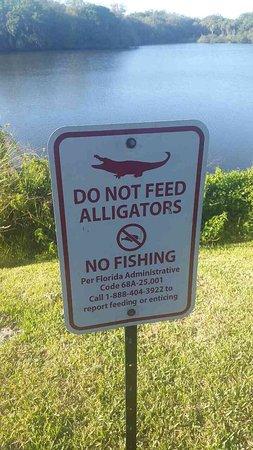 Ellenton, FL: photo8.jpg