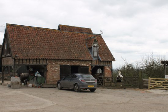 Martock, UK: Barn and horses