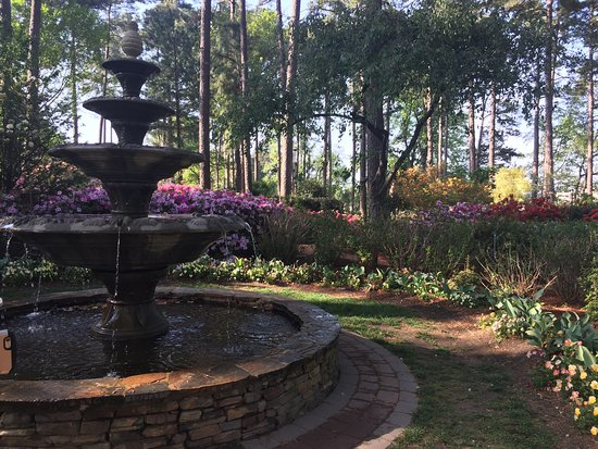 Wral azalea garden raleigh all you need to know before you go with photos tripadvisor for Gardens in raleigh nc