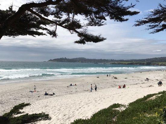 L'Auberge Carmel: Carmel Beach