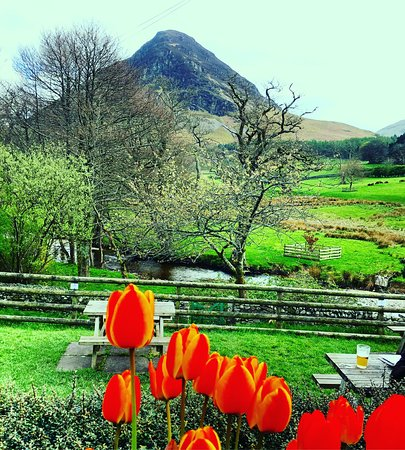 Loweswater, UK: photo0.jpg