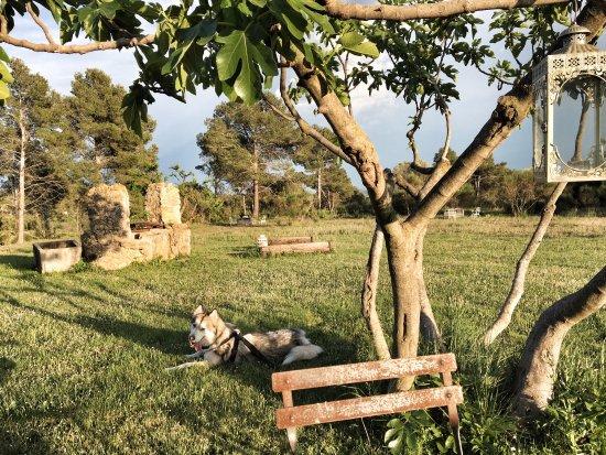 Vilanant, Spain: photo0.jpg