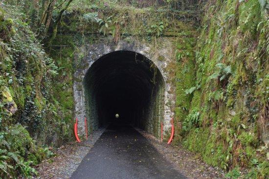 Copper Coast B&B: Greenway_Durrow tunnell_2