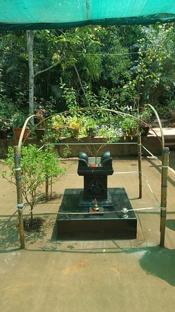 Tropical Spice Plantation: Altar in front of the house.