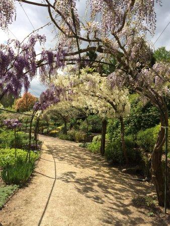 Picture of parc floral d 39 apremont apremont for Apremont sur allier jardin