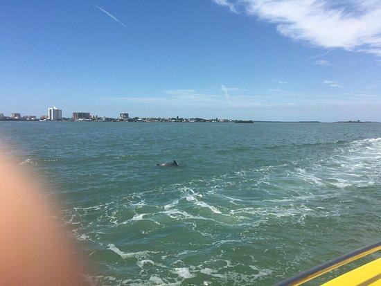 Sea Screamer: photo1.jpg