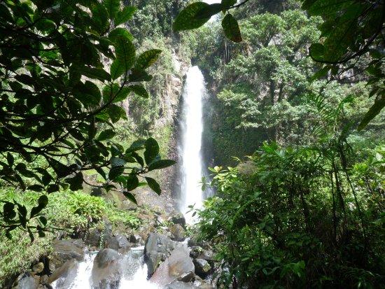 "Cerro Punta, Panama: waterfall ""Macho de Monte""  in nabourhood of Cuesta de Piedra, Chiriqui, Panama"