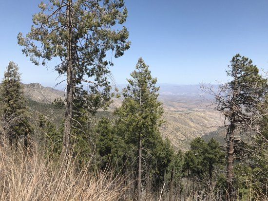 Mt. Lemmon Scenic Byway: photo2.jpg