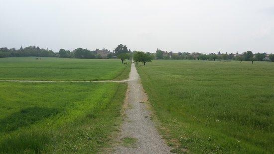 Reggio Emilia, Ιταλία: Particolari del parco