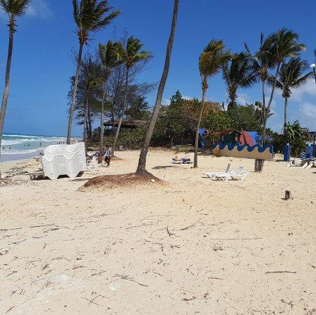 Gran Caribe Club Atlantico: Upper Beach April 2017 Looking East