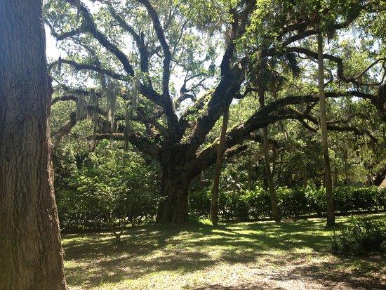Oaks East Palm Beach Gardens Florida