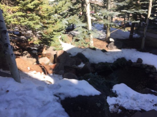 Snowmass Village, Kolorado: photo1.jpg