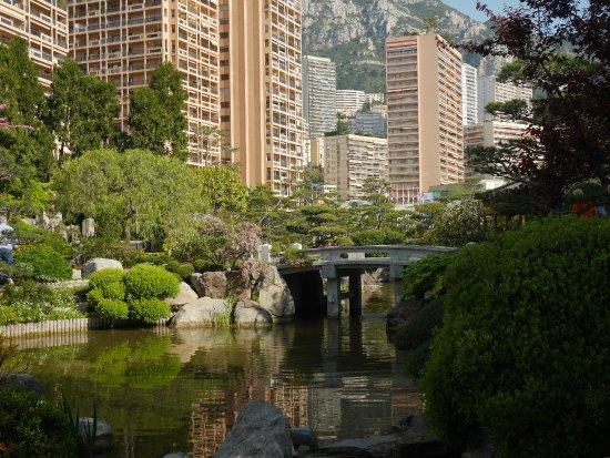 jardin exotique monaco picture of exotic garden. Black Bedroom Furniture Sets. Home Design Ideas