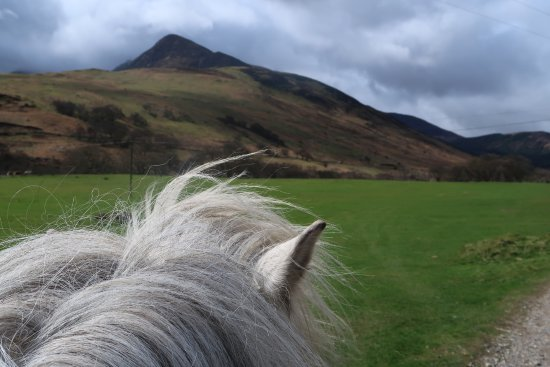 ‪‪Sannox‬, UK: See Arran on horseback‬