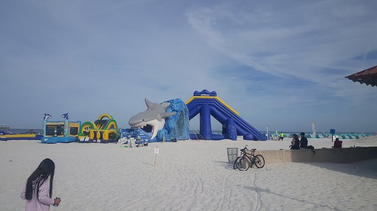 pier 60 picture of pier 60 clearwater tripadvisor