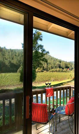 West Sonoma Inn & Spa: View of Korbel vineyard from room 126