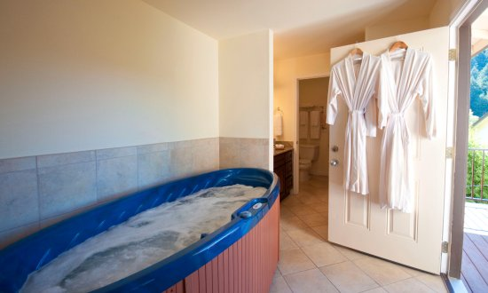 West Sonoma Inn & Spa: Sports Spa Suite