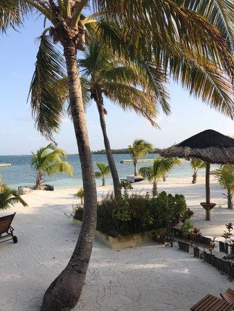 Turneffe Island, Belize: IMG-20170409-WA0030_large.jpg
