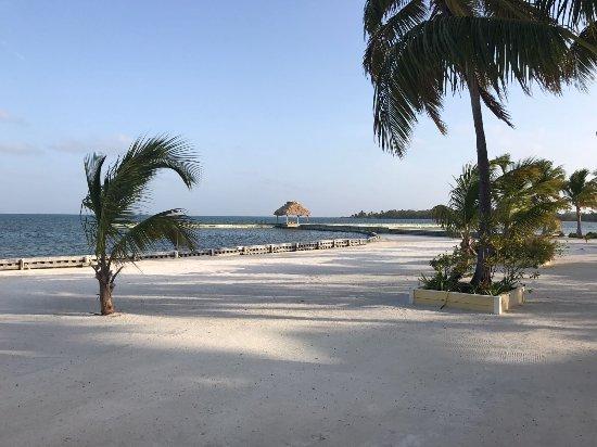 Turneffe Island, Belize: IMG-20170409-WA0031_large.jpg