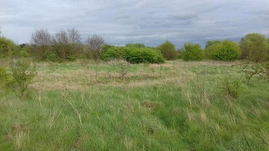 Ilford, UK: FAIRLOP WATERS COUNTRY PARK