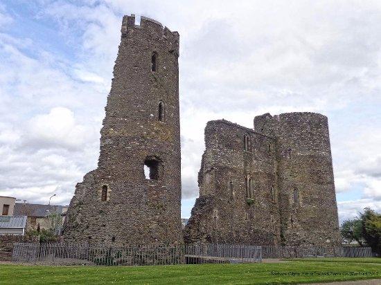 Ferns Castle Co. Wexford Photo by Barbara Glynn
