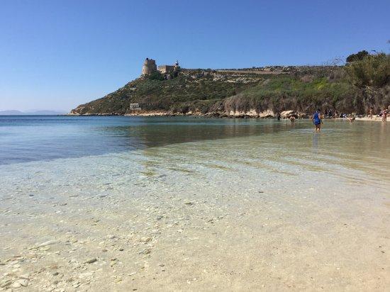 Calamosca - Picture of Calamosca Beach, Cagliari - TripAdvisor