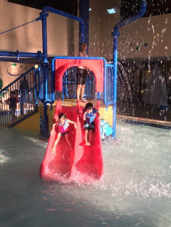 staybridge suites salt lake west valley city grins and fins water park